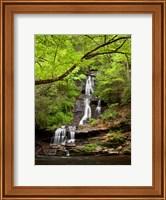 Framed Tom Branch Falls, North Carolina