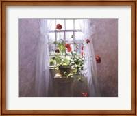 Framed Red Geraniums
