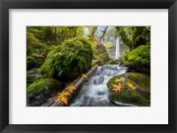 Framed Autumn At Elowah Falls, Oregon
