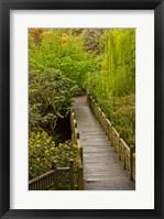 Framed Bridge At Crystal Springs Rhododendron Garden, Portland, Oregon