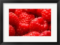 Framed Close-Up Of Fresh Raspberries