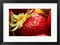 Framed Close-Up Of Fresh Strawberry