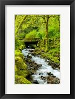 Framed Wahkeena Falls, Oregon
