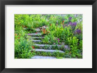 Framed Summer Flowers On Stairs In Pennsylvania