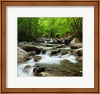 Framed Little Pigeon River At Greenbrier
