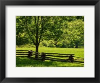 Framed Old Wooden Fence In Cades Cove