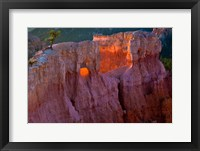 Framed First Light On The Hoodoos At Sunrise Point, Bryce Canyon National Park