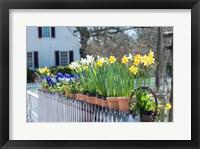 Framed Garden At Colonial Williamsburg, Virginia