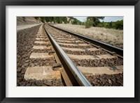 Framed Tailroad Tracks At Marshall, Washington