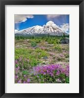 Framed Mount Saint Helens Landscape, Washington State