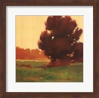 Framed Early Fall