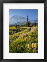 Framed Paradise Area Landscape Of Mt Rainier National Park