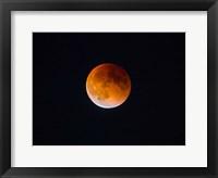 Framed Blood Moon In Seattle