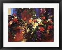 Framed Color Pots