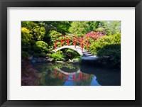 Framed Moon Bridge In The Kubota Gardensm Washington State