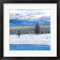 Framed Yellowstone National Park In Winter, Wyoming