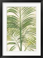 Framed Palms II Bright
