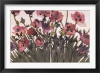 Framed Spring Poppies IV