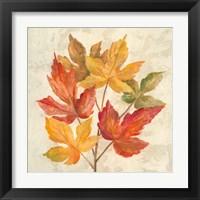 Framed November Leaves IV