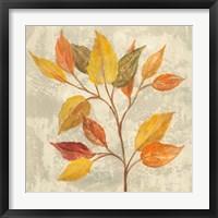 Framed November Leaves II