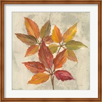 Framed November Leaves I