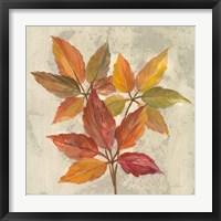 Framed November Leaves I