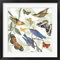 Framed Natures Flight I