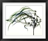 Framed Wind