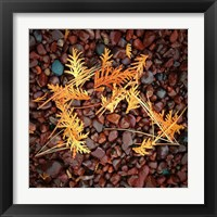 Framed Brown Pebbles with Cedar