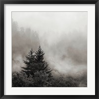 Framed Rising Mist, Smoky Mountains
