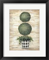 Framed Gingham Topiary Spheres