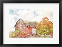 Framed Autumn Maple by the Barn