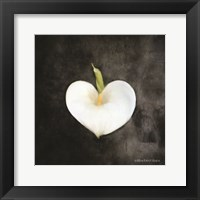 Framed Contemporary Floral Cala Lily