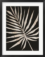 Framed Palm Frond Wood Grain IV