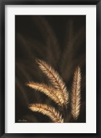 Framed Golden Grass I