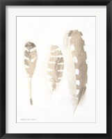 Framed Neutral Feathers Study