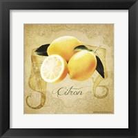Framed Vintage Lemons Citron