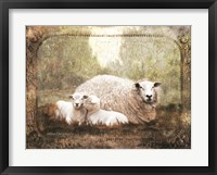 Framed Vintage Ewe and Sleeping Lambs
