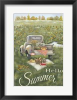 Framed Hello Summer