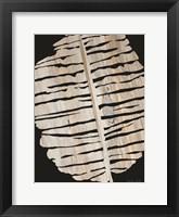 Framed Palm Frond Wood Grain II