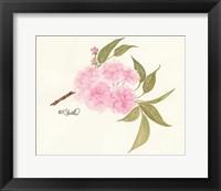 Framed Bashful Blossoms