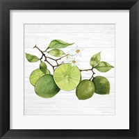 Framed Citrus Garden VII Shiplap