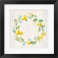 Framed Floursack Lemons V Navy