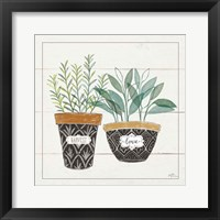 Framed Fine Herbs IV Love