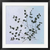 Botanical Study VII Blue Framed Print