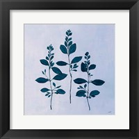 Framed Botanical Study IV Blue