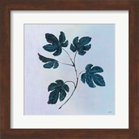 Framed Botanical Study III Blue