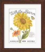 Framed White Barn Flowers I