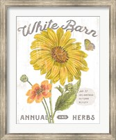 Framed White Barn Flowers I