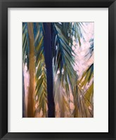 Framed Palm Trees 2